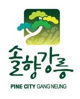강릉시청공식블로그 블로그